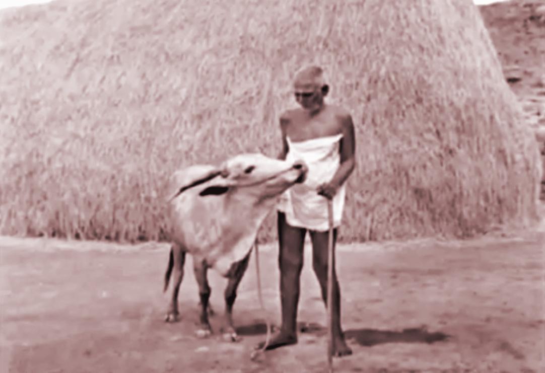 Ramana Lakshmi 11