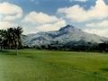 Arunachala Hill 12