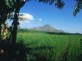 Arunachala Hill 13