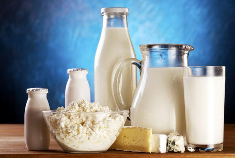 Talk 22. Good quality diet dairy