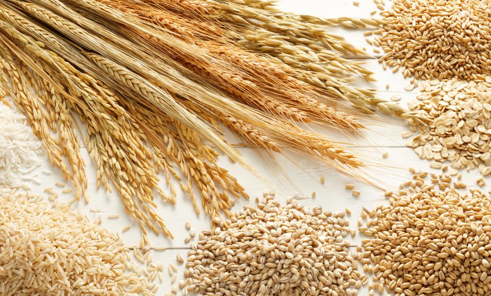 Talk 22. Good quality diet grains