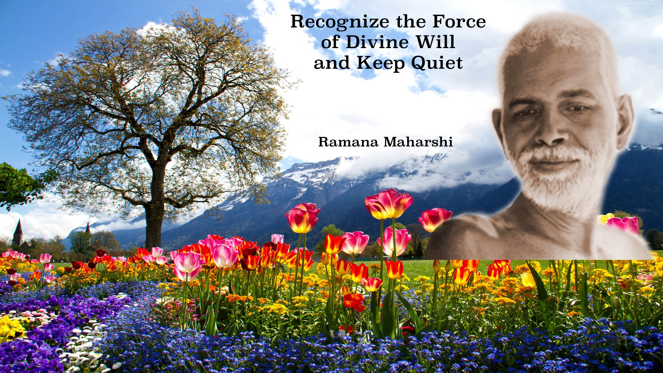 Recognize the force of divine will and keep quiet