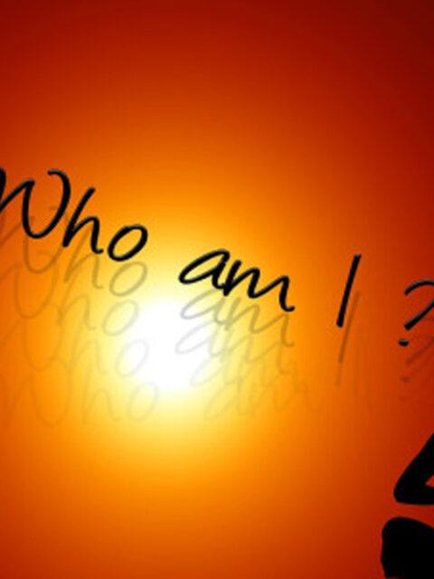 Who Am I Self Enquiry