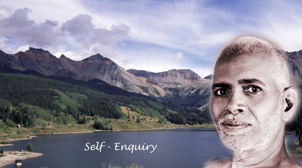 What is Self-Enquiry? How to do it? (5)